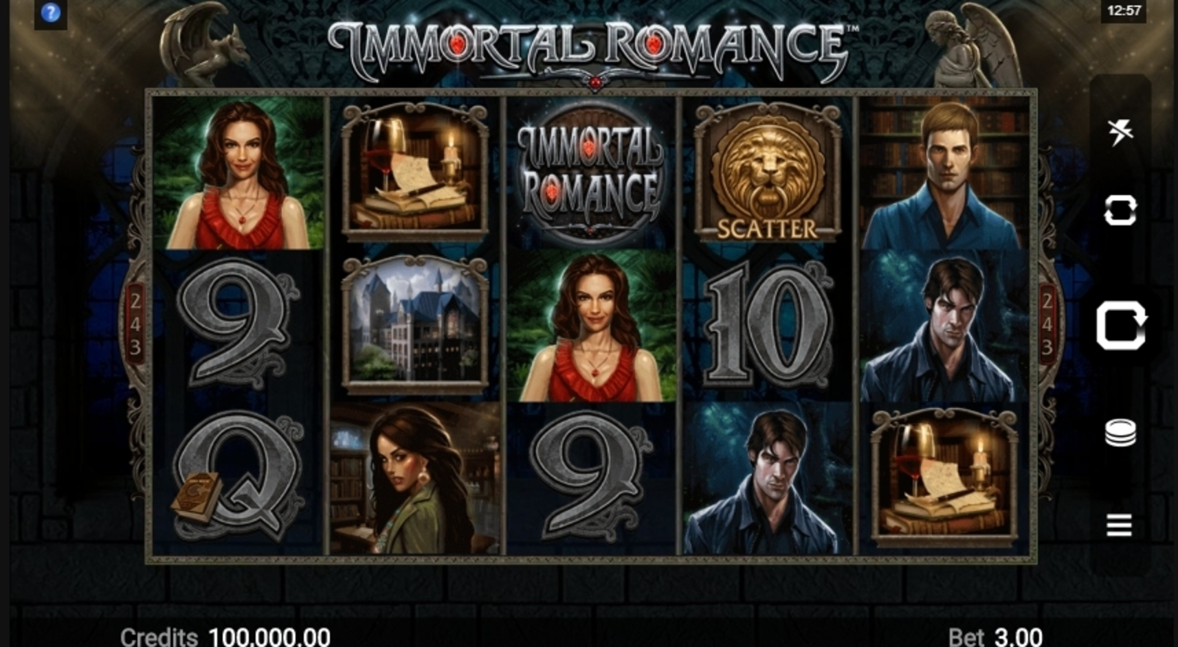 Reels in Immortal Romance Slot Game by Microgaming