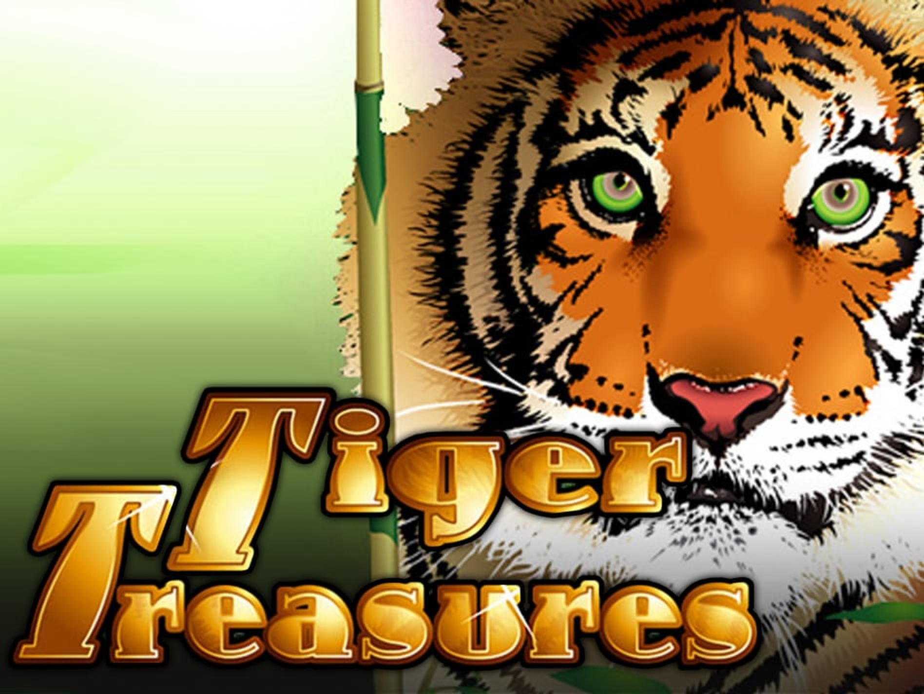 The Tiger Treasures Online Slot Demo Game by Real Time Gaming