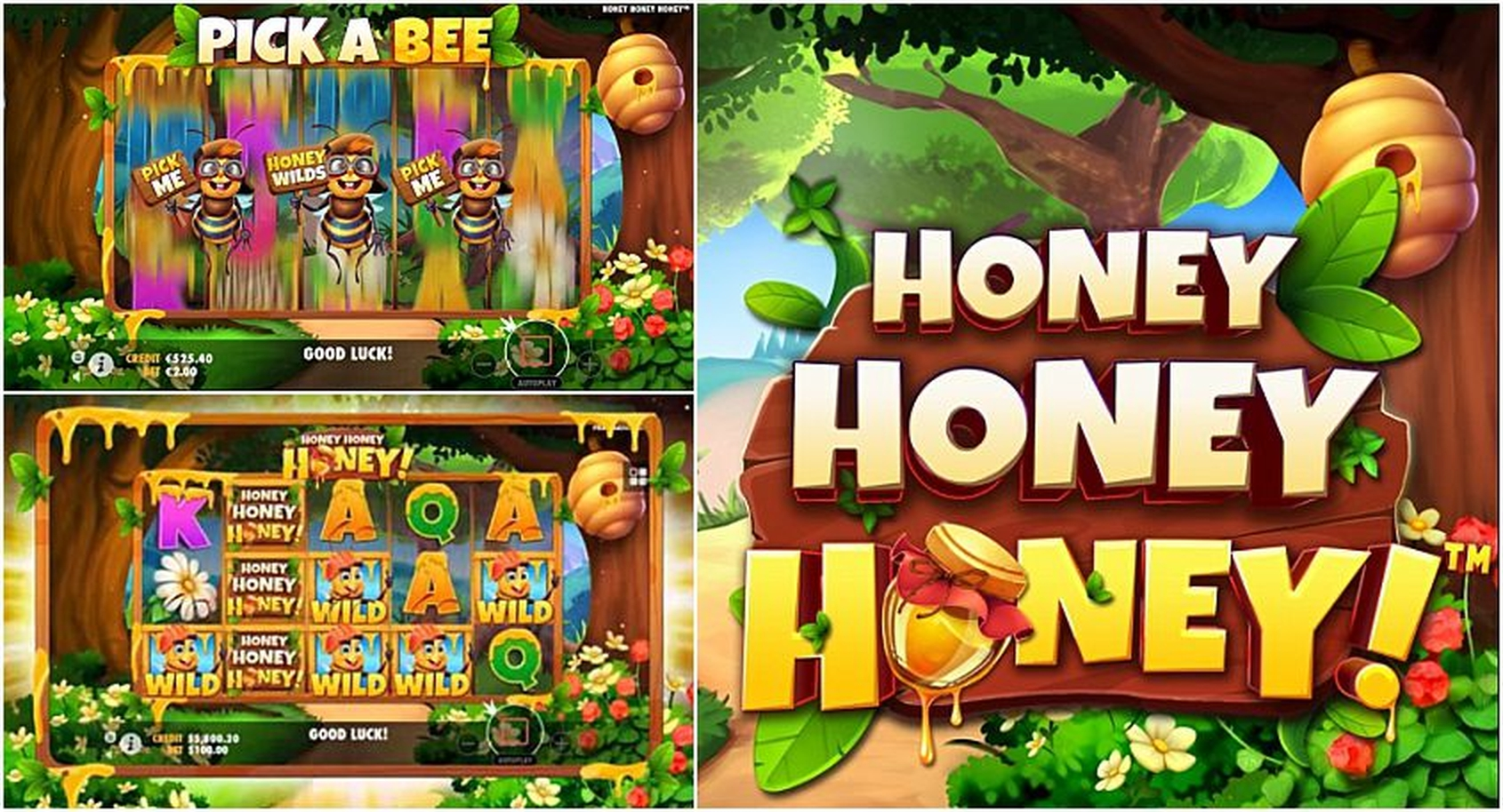 The Honey Money (Spin Games) Online Slot Demo Game by Spin Games